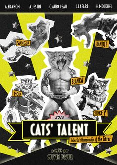 Poster of Cat's Talent. Beauty and Talents Challenge for cats.