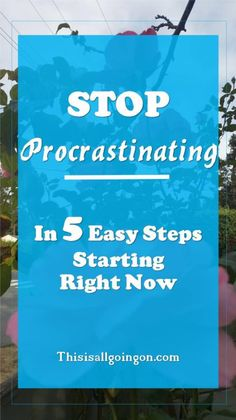 STOP PROCRASTINATING - In 5 Easy Steps Starting Right Now.    Procrastination can kill productivity and create stress.  Figure out why you procrastinate and what to do about it.    #procrastination #personalgrowth #selfimprovement