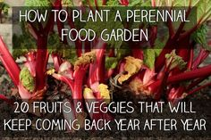 How to Plant a Perennial Food Garden – 20 Fruits & Veggies That Will Keep Coming…