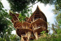 #интересное  Невероятные бамбуковые дома на Бали (10 фото)   Элора Харди променяла успешную карьеру в мире моды Нью-Йорка на строительство бамбуковых домов в Индонезии. Совместно со своей командой ibuku девушка воплотила в жизнь множество проектов, которые в основ�