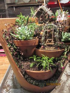 Fabulous succulents and use of imagination Outdoor Cactus Garden, Fairy Garden Pots, Garden Deco, Fairy Garden Houses, Garden Terrarium, Planting Succulents, Broken Pot Garden, Little Gardens, Fairy Garden Accessories