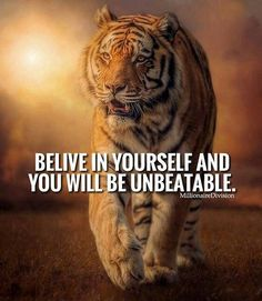 Home of world of quotes. Home of world of inspirational quotes for inspiration. Home of world of motivational stuff for motivation. Home of best things Tiger Quotes, Lion Quotes, Animal Quotes, Strong Quotes, Positive Quotes, Motivational Quotes, Inspirational Quotes, Badass Quotes, Best Quotes