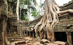 Ta Prohm templom Kambodzsa