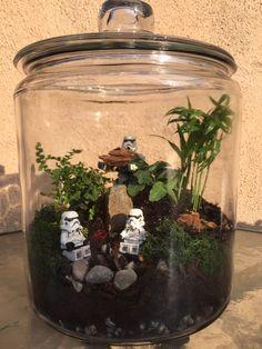 Star Wars Terrarium by @fitgeekdxb