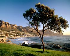 It seems that everything in South Africa is created for tourists. There are several government programs which are responsible for tourism industry. Special leisure and tour or adventure attractions and excursions are proposed for visitors.  There