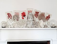 Great mantel with coral