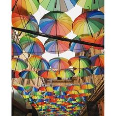 I spent a few days in Bucharest this week on a secret mission (details to come!), and stumbled across this alley filled with colorful umbrellas. It was just one lovely surprise among many in this underrated city. Travel Around The World, Around The Worlds, Umbrella Street, Walks In London, Colorful Umbrellas, London Free, Were All Mad Here, City Maps, Trip Planning
