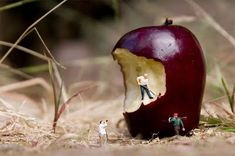 Photographer: Slinkachu. Small depth of field e.g. f4.5