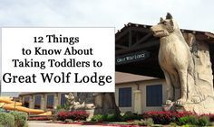 -12 Things to Know About Taking Toddlers to Great Wolf Lodge