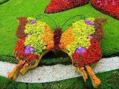 Baterfly flower