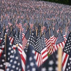 Remembering the fallen and all who have served American Spirit, American Pride, American History, American Flag, American Decor, I Love America, God Bless America, Patriotic Pictures, Sea To Shining Sea