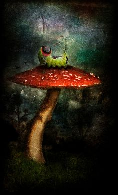Frolicsome caterpillar on a 'shroom - Tina Bell Vance