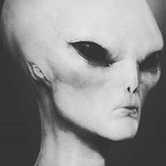 Aliens 👽 have feelings to you know, it's just usually its related to the eating 🍽 of things that we consider weird like cows 🐄 udders and 👀. Aliens Movie, Aliens And Ufos, Ancient Aliens, Aliens On The Moon, Ufos Are Real, Thunder And Lightning Storm, Alien Pictures, Alien Proof, Aliens Colonial Marines