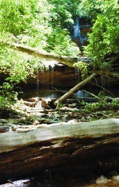 Fort Knox Trail - Kentucky Trails | AllTrails.com