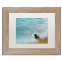 """Trademark Art Whelk Seashell and Misty Wave Framed Photographic Print Size: 11"""" H x 14"""" W x 0.5"""" D"""