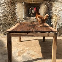 Nadie se resiste al efecto Varona: tarde ajetreada en nuestra pasarela 🐓 #woodtable #woodworking #woodworker #carpenter #carpentry #interiordesign #deco #decoration #decor #countryside #countrysidelife #hen #gallina #mcfly #diseñodeinteriores #decoracion #carpinteria #mesaunica #piezaunica #simplythebest #walnut #klimt #architecture #architecturelovers #arquitectura Dining Table Chairs, Table Legs, Stump Table, Live Edge Table, Conference Table, Wood Slab, Fine Woodworking, Wood Design, Joinery