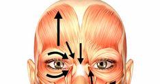 Estimulació de la propiocepció Per estimular la funció sensitiva del nervi facial aplicarem sobre la zona afectada: Calor local: pass...