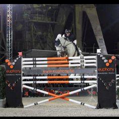 Amazing horse and rider