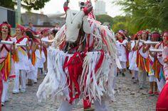 A mostra, com oito dias repletos de atividades ligadas às artes cênicas, acontece no Barracão Clowns e outros pontos da cidade, de 24 a 31 de outubro.