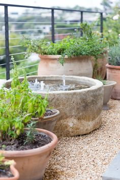 Outdoor Water Features, Water Features In The Garden, Water Garden, Garden Pots, Plantas Indoor, Garden Fountains, Garden Styles, Dream Garden, Backyard Landscaping