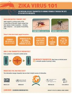 #INFOGRAPHICS How the aedes aegypti mosquito spreads the #ZikaVirus and you can protect yourself.