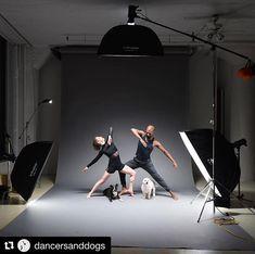 Behind the scenes by @dancersanddogs :  Test shot - Time for something different... #dancersanddogs #contemporary #dancer #dancelife #instadance #dance #dancephotography #doglife #dogphotography #bts #behindthescenes #testshot #profoto #profotob1  #instadog #famousbtsmagazine