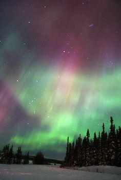 Northern lights in Whitehorse, Yukon, Canada