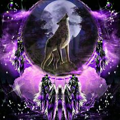 Dreamcatcher with Wolf Wolf Photos, Wolf Pictures, Wolf Background, Wolf Howling At Moon, Wolf Dreamcatcher, Indian Wolf, Native American Wolf, Dream Catcher Art, Wolf Artwork