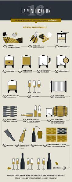 vinification du crémant - infographie