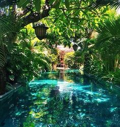 Having a pool sounds awesome especially if you are working with the best backyard pool landscaping ideas there is. How you design a proper backyard with a pool matters. Beautiful Pools, Beautiful Places, Dream Pools, Cool Pools, Dream Vacations, Dream Vacation Spots, Romantic Vacations, The Places Youll Go, Outdoor Living