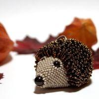 Karli - hedgehog