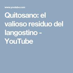 Quitosano: el valioso residuo del langostino - YouTube