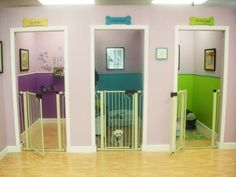 Kennels in the basement-add Dutch doors instead of gates.