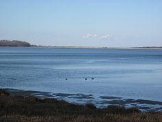 Cordwood Beach - Head of the Harbor, New York Island Girl, Long Island, New York, Spaces, Beach, Water, Outdoor, Gripe Water, Outdoors
