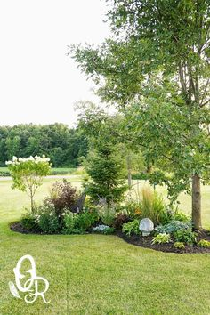 Image result for landscaping garden front of house berm diy