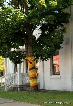 Lowell,Mich   Tree decorating