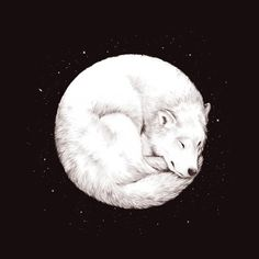 ~* Wolf Moon.... how lovely *~