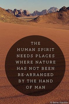 Into the wild Great Quotes, Quotes To Live By, Me Quotes, Inspirational Quotes, Fabulous Quotes, Into The Wild, Barack Obama, Words Worth, Travel Quotes