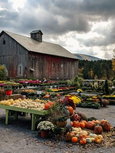 While all of the New England lights up with color during Autumn, it is safe to say that Vermont seems to be the state to visit during fall.  Vermont is full of indulgent places to stay, knock out farm to table restaurants, and villages that remind us of a simpler time in America, it should be on everyone's Fall bucket list. England Map, New England Travel, New England Style, New England Usa, Foliage Map, Killington Vermont, Manchester Vermont, New England Fall Foliage, Beach Trip