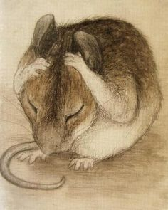 just a little headache by mousee Animal Drawings, Art Drawings, Hamsters, Rodents, Cute Mouse, Beatrix Potter, Children's Book Illustration, Pyrography, Pet Birds