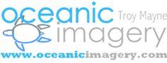 Oceanic Imagery Underwater Photography, Nature, wildlife, marinelife, fine art