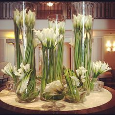 Who knew? Calla Lilies can grow to be 24 inches tall! This majestic arrangement at @Bevvvvverly Wilshire (A Four Seasons Hotel) took our breath away.
