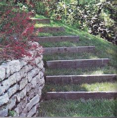 lake lot ideas on pinterest outdoor stairs landscaping and natural