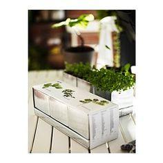 ÖRTIG Mixed kitchen herbs 1 tray 3 pots, assorted - IKEA