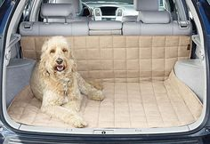 #winterize your car - Waterproof Auto Cargo Mat: perfect for car rides with the family dogs!