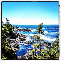Wild Pacific Trail, Ucluelet, Vancouver Island...hiked this trail!