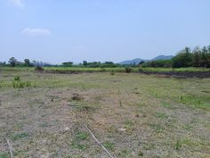 Thailand Real Estate - Hua Hin Property For Sale Land For Development in Hin Lek Fai -- 2 Rai (3,200 Square Meters) -- Chanote Title Deed -- Dimensions:  40 x 80 Meters -- 40 M Government Road Frontage -- Water & Electric Utilities on Site Price:  2.8 Million THB​