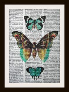 Light blue butterfly print