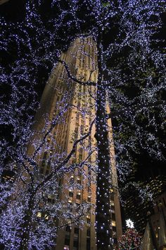 New York (Rock Center) @ Christmas