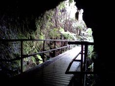 Things to do in #Hawaii: Thurston Lava Tube at Hawaii Volcanoes National Park